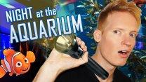 Mysterious Night at the Aquarium