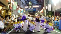 1.3 Million Tourists At The Annual Japanese Awa Odori Street Dance Festival