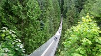 A Walk Through The Canadian Wilderness At The Capilano Suspension Bridge