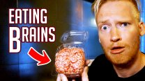Eating Cow Brains