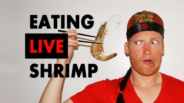Eating Live Shrimp in Shanghai