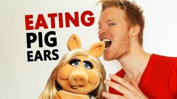 Eating Pig Ears