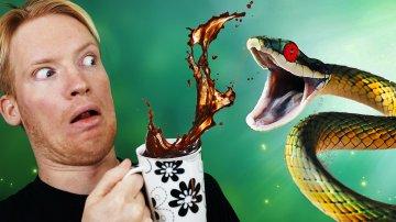 Best Snake Cafe in Tokyo