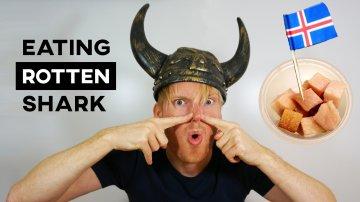 Eating Rotten Shark in Iceland